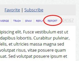 Forum Report Link